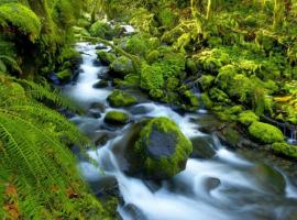 Для чего подают углекислый газ (СО2)? Как устроены природные реки и озера?